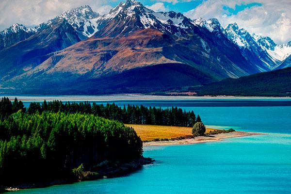 Расстрел в Новой Зеландии Pinterest: Языковые курсы в Новой Зеландии